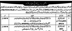 NTS JOBS 2019 FOR ONLY DISABLED PERSONS (Teachers, CT, DM