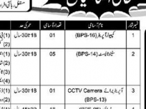 NTS JOBS 2019 FOR Computer Operator, Stenotypist, Driver etc., BPS-3 TO 16 NTS JOBS 2019 APPLY HERE