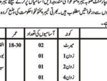 9 NTS JOBS 2019 FOR JUNIOR CLERK BPS-11 NTS JOBS 2019 APPLY HERE