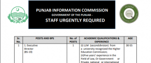 NTS JOBS 2019 IN Punjab Information Commission, Government