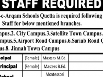NTS JOBS 2019 Teachers, principal, Accountants etc., NTS JOBS 2019 APPLY HERE