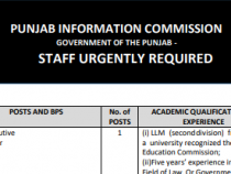 NTS JOBS 2019 INPunjab Information Commission, Government of the PunjabBPS- 11 to 19 NTS JOBS 2019 APPLY HERE