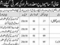NTS JOBS 2019 FOR DISABLED PERSONS BS- 1 to 12 NTS JOBS 2019 APPLY HERE
