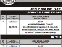 PPSC 74 JOBS 2019 Manager, Assistant, Educator, Staff Nurse etc., BS-15 to 18 PPSC JOBS 2019 APPLY HERE