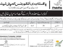 PTS JOBS 2019 FOR DISABLED PERSONS AS AN ASSISTANT PTS JOBS 2019 APPLY HERE